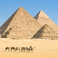 Pyramid trip