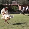 Parrilla en el almuerzo y espectáculo de caballos en Wayra