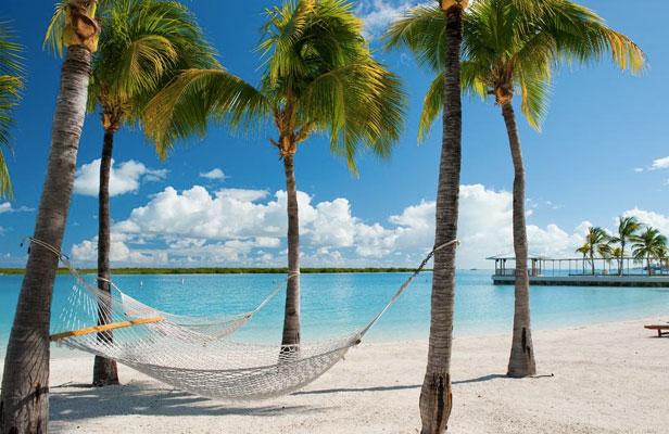 AMAZING Caribbean Deals!