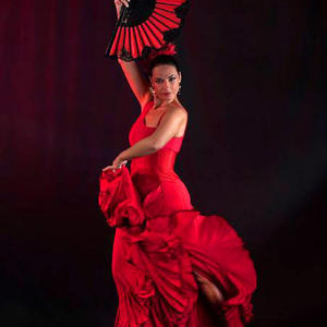 """Evening of Flamenco"" Show for Two"