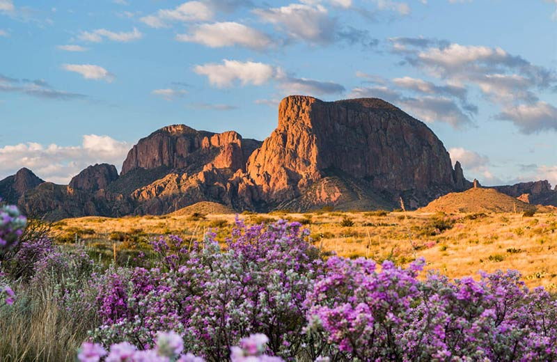 Hike The Big Bend