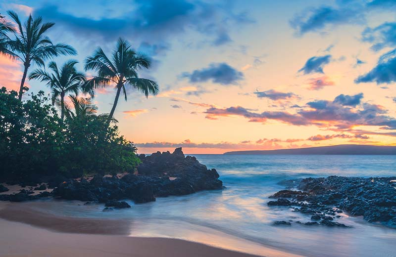 20% Off Maui